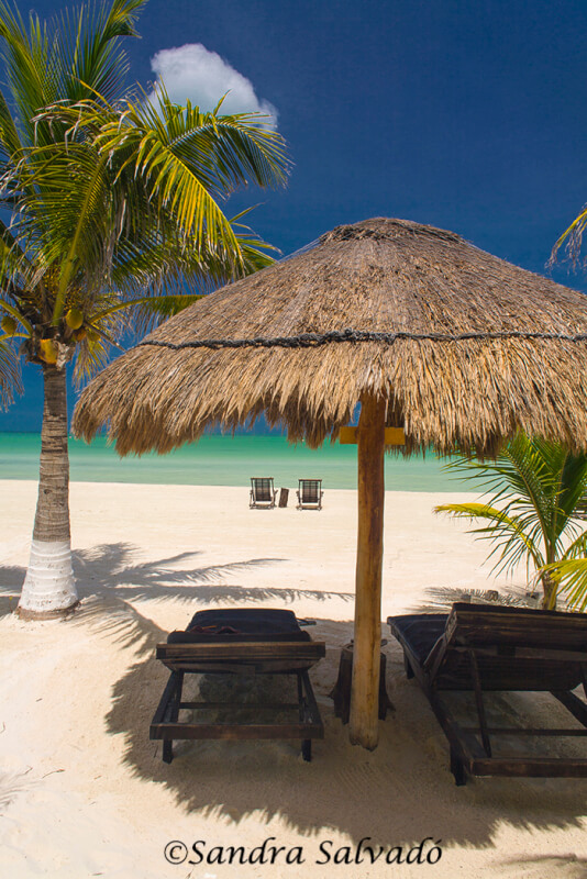 How to get to Holbox from Cancun, Playa del Carmen and other 5 destinations