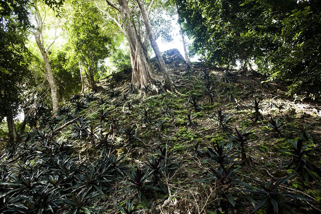 Zona arqueologica Dzibanche, Quintana Roo