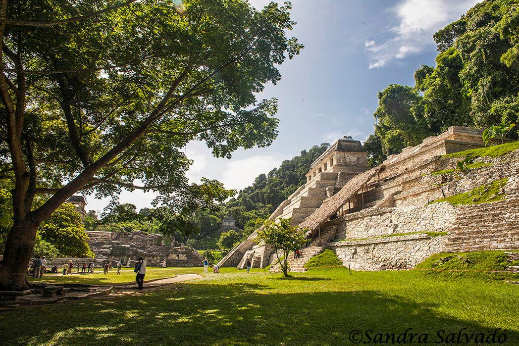 ZA Palenque Chiapas, Mexico