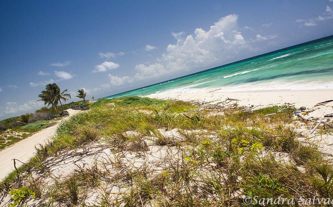 Sian Ka'an Biosphere Reserve, Riviera Maya, Quintana Roo