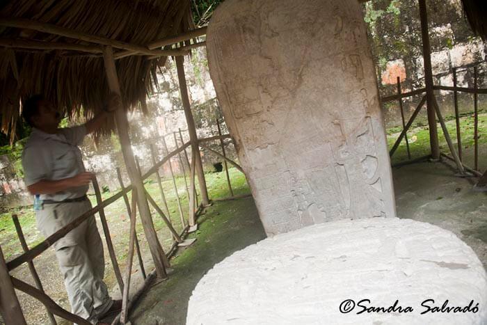 Estela y altar presentados de manera conjunta. Tikal