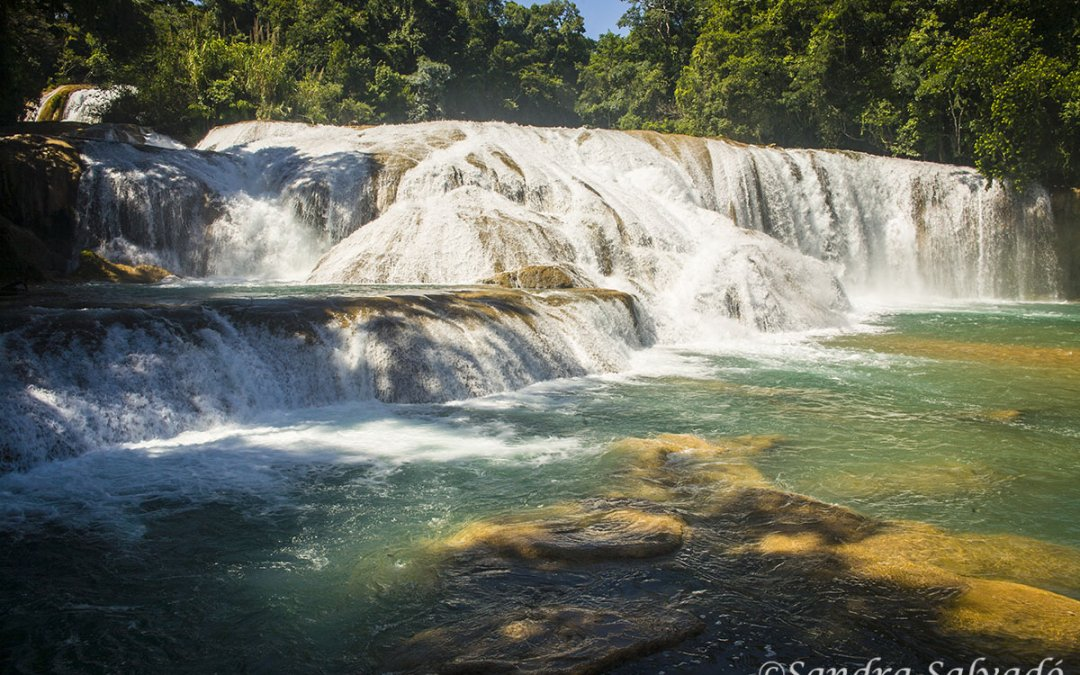 How to visit the Agua Azul pools? Unmissable turquoise waters of Chiapas