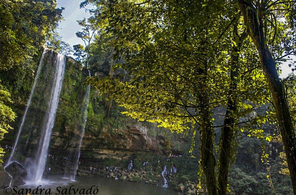Cascada Misol-ha, Chiapas, México.