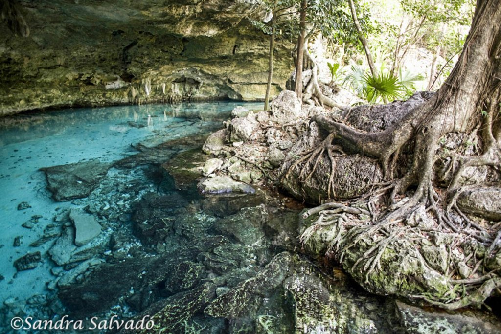 cenote two eyes
