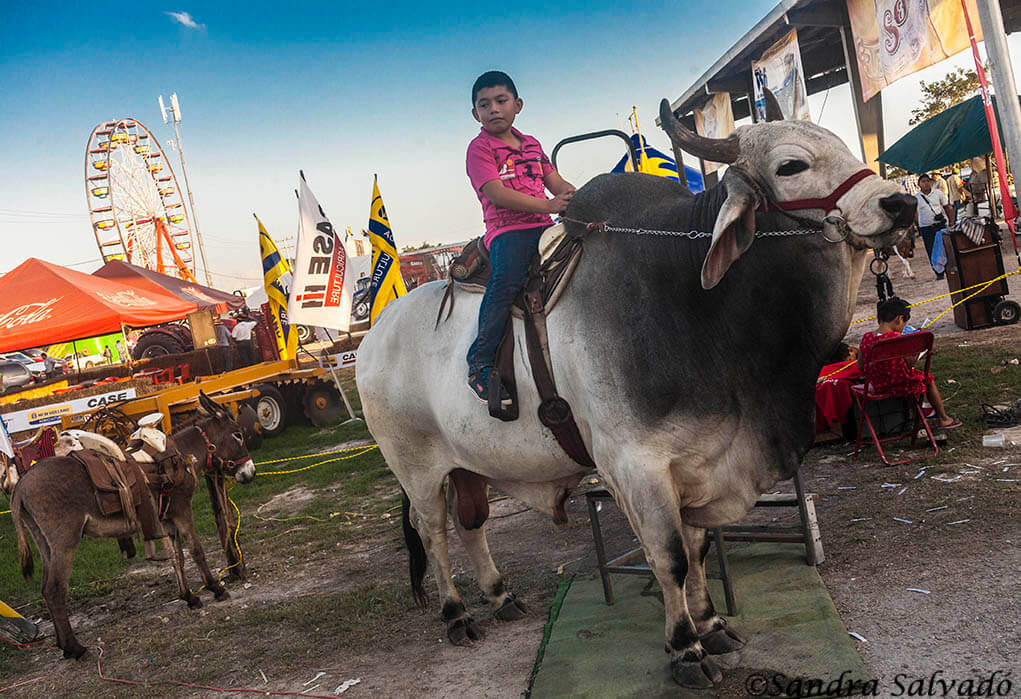 Attractions at the fairgrounds at the cattle fair of Reyes de Tizimín. Yucatan, Mexico