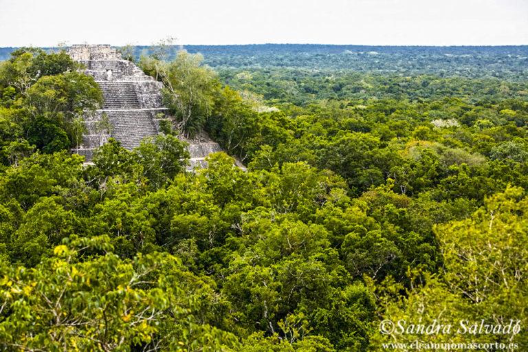 calakmul mayas