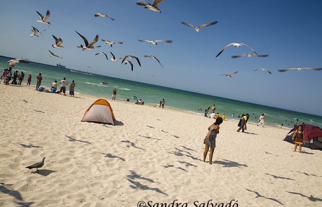 Progreso, the beach getaway from Mérida