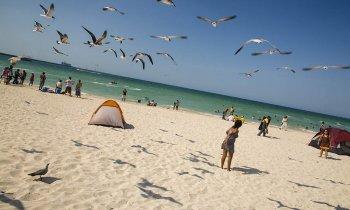 Progreso, la escapada a la playa desde Mérida