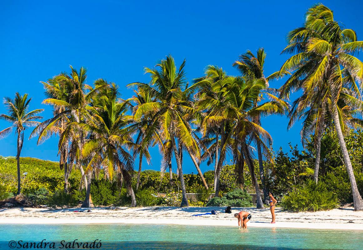 isla-contoy-cancun