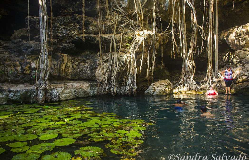 Cenote X-Batún, un rincón de telenovela