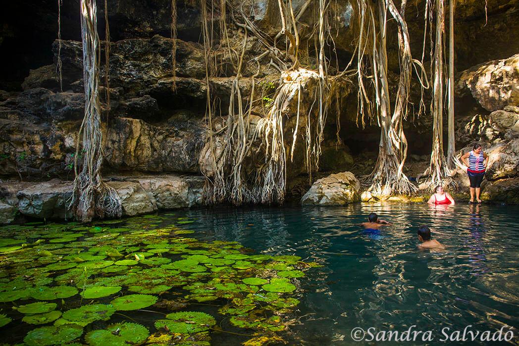 Cenote X-Batún, Yucatán