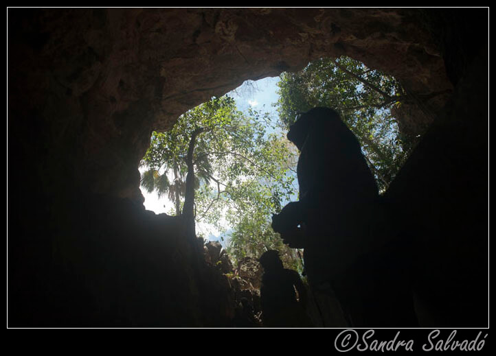 Grottoes in the Yucatan Peninsula 5