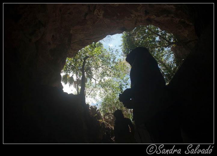 Grutas en la Península de Yucatán 5