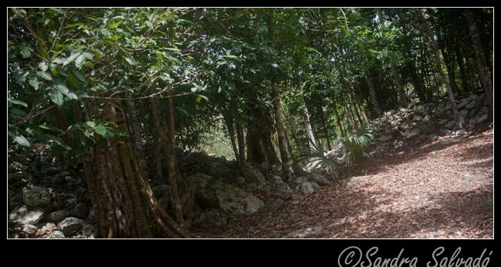 El Naranjal archeological zone