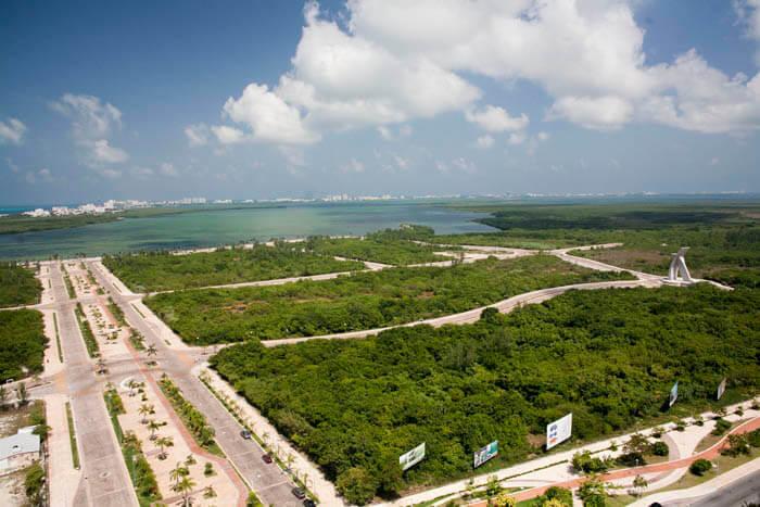 Áreas de mangle que van a ser devastadas, ¿progreso?