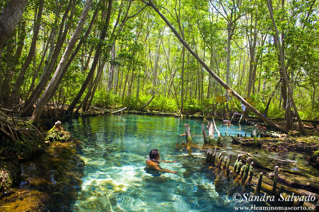 Celestun Biosphere Reserve