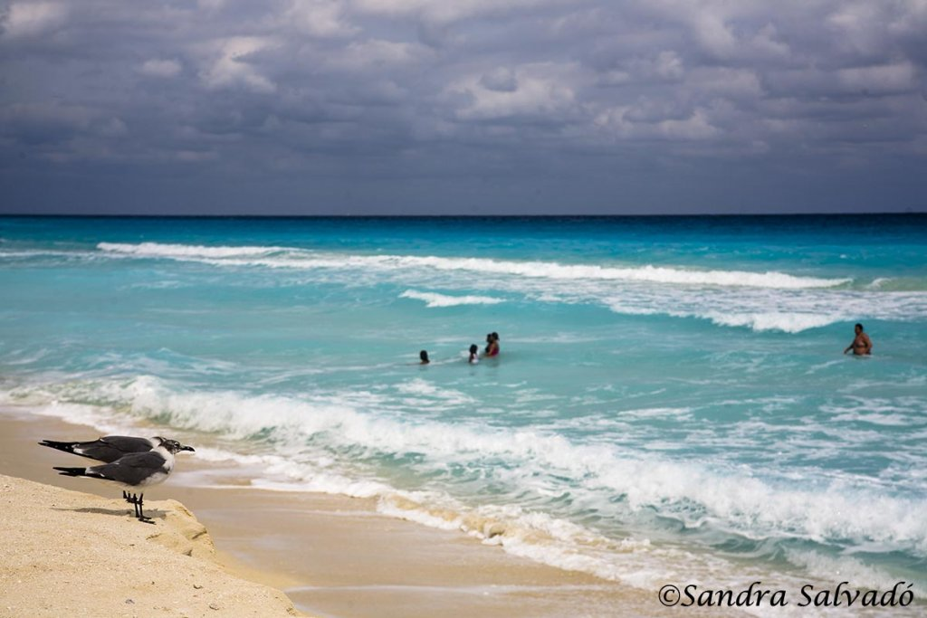 playas_cancun