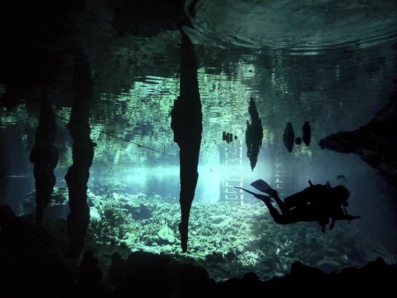 cenotes_peninsula_yucatan