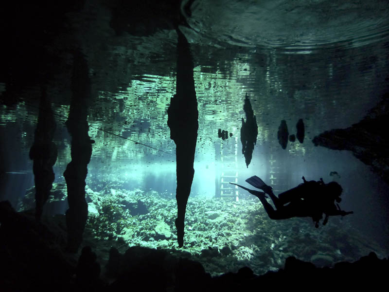 Buceo en Cenote Riviera Maya, Quintana Roo, México.
