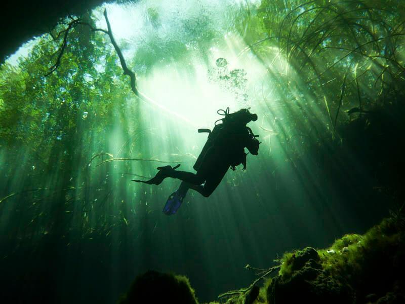 Diving in Cenote Riviera Maya, Quintana Roo, Mexico.
