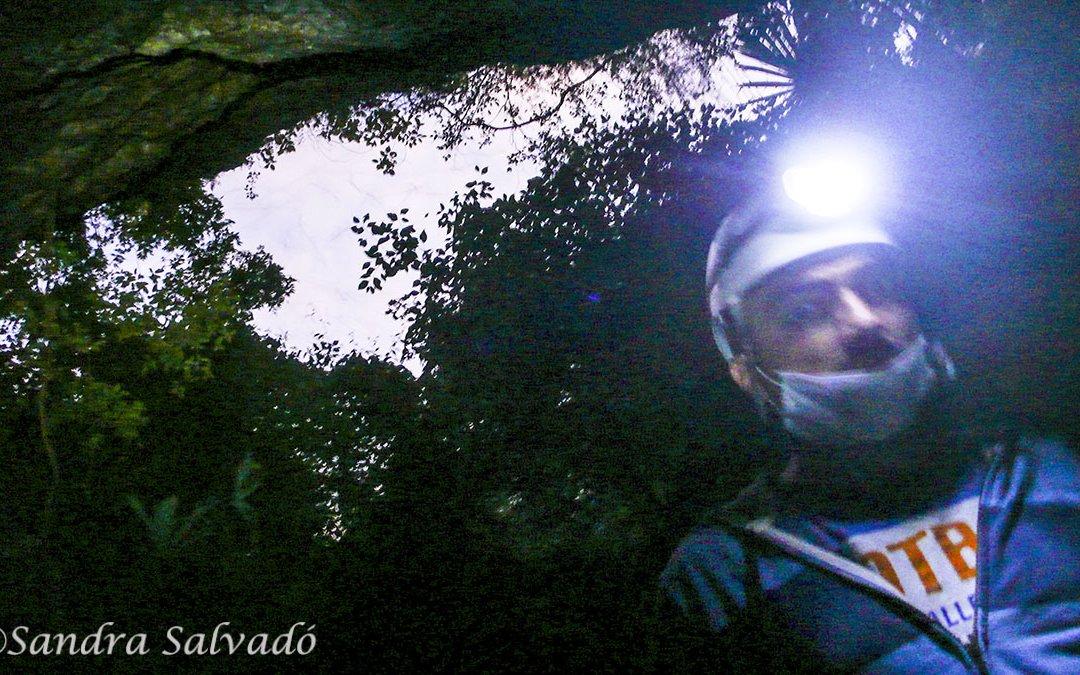 Las grutas de Kantemó, las serpientes colgantes