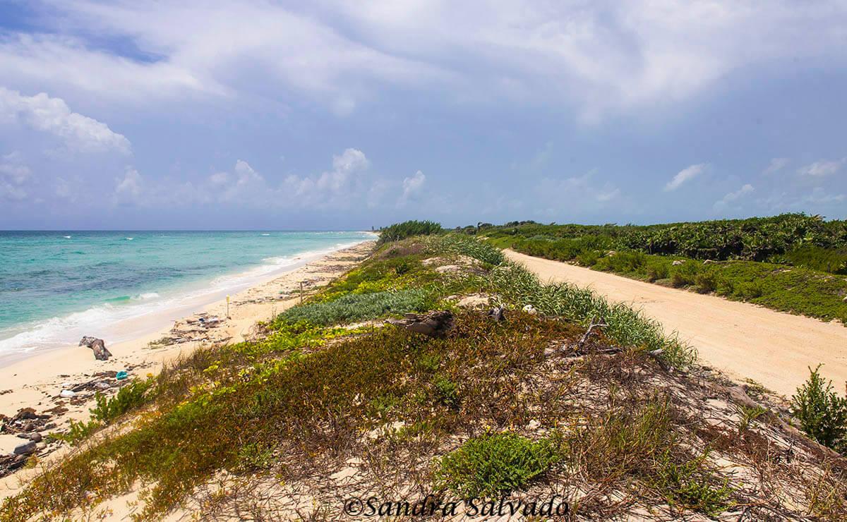 Ssian Ka'an Reserve, Riviera Maya, Quintana Roo, Mexico.