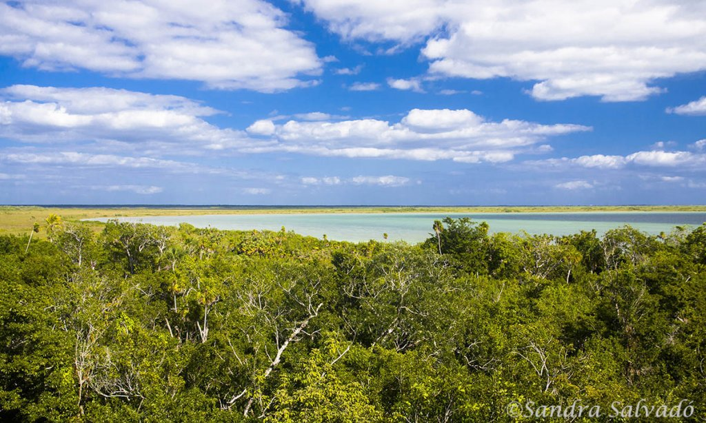 Sian Kaan Biosphere Reserve, Quinrtana Roo, Mexico.
