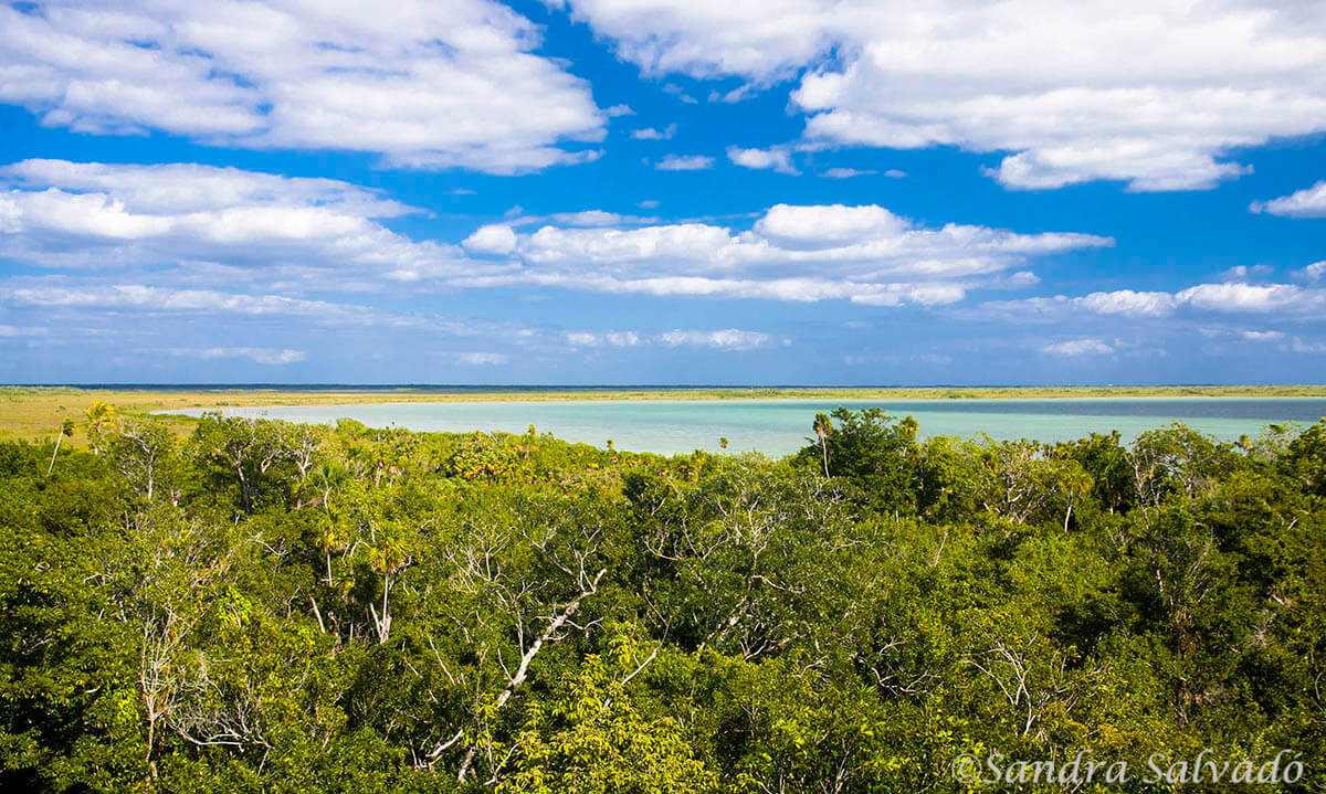 Sian Kaan Biosphere Reserve, Quintana Roo, Mexico.