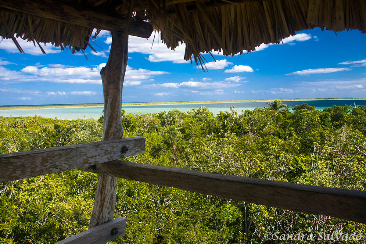 Viewpoint of the Sian Ka'an Biosphere Reserve, Riviera Maya, Quintana Roo, Mexico.