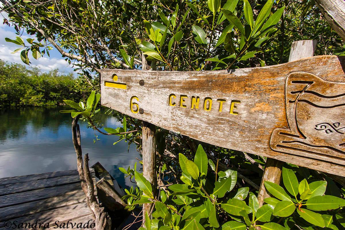 cenote sian ka'an