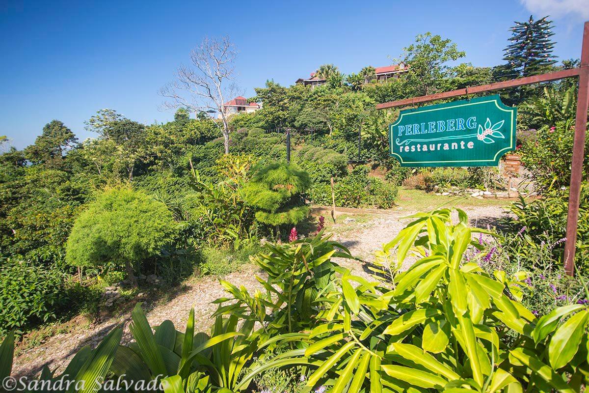 Finca Hamburgo, Ruta del café, Tapachula, Chiapas