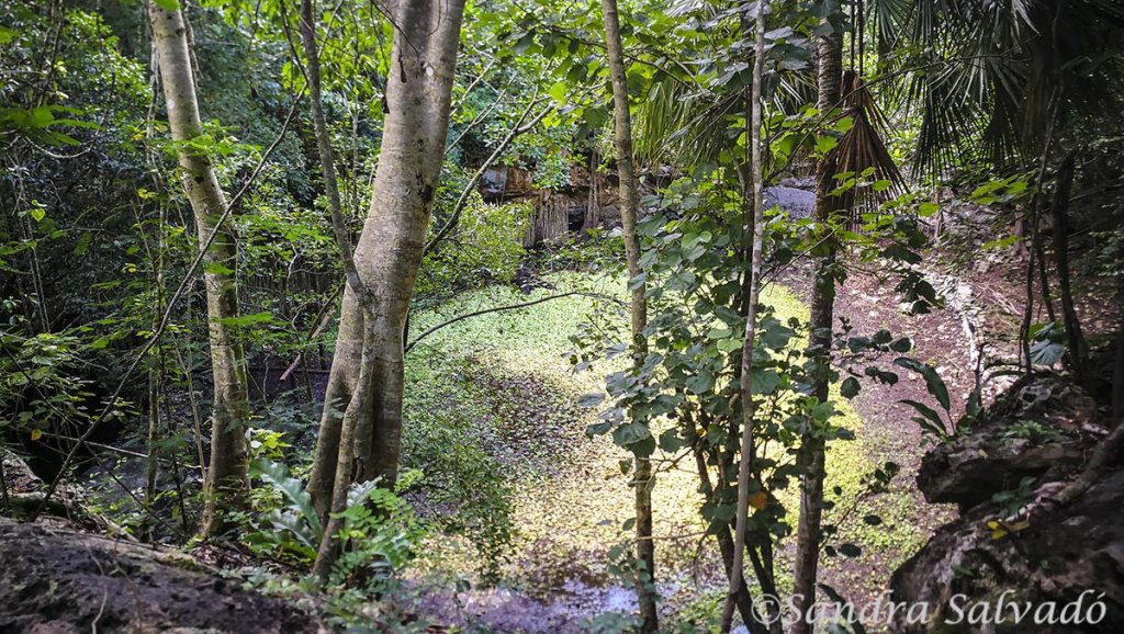 San Manuel km 11, descubre el museo maya comunitario y una ruta de senderismo entre cenotes 2