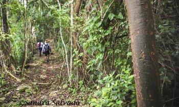 7 little known tourist places in Yucatan