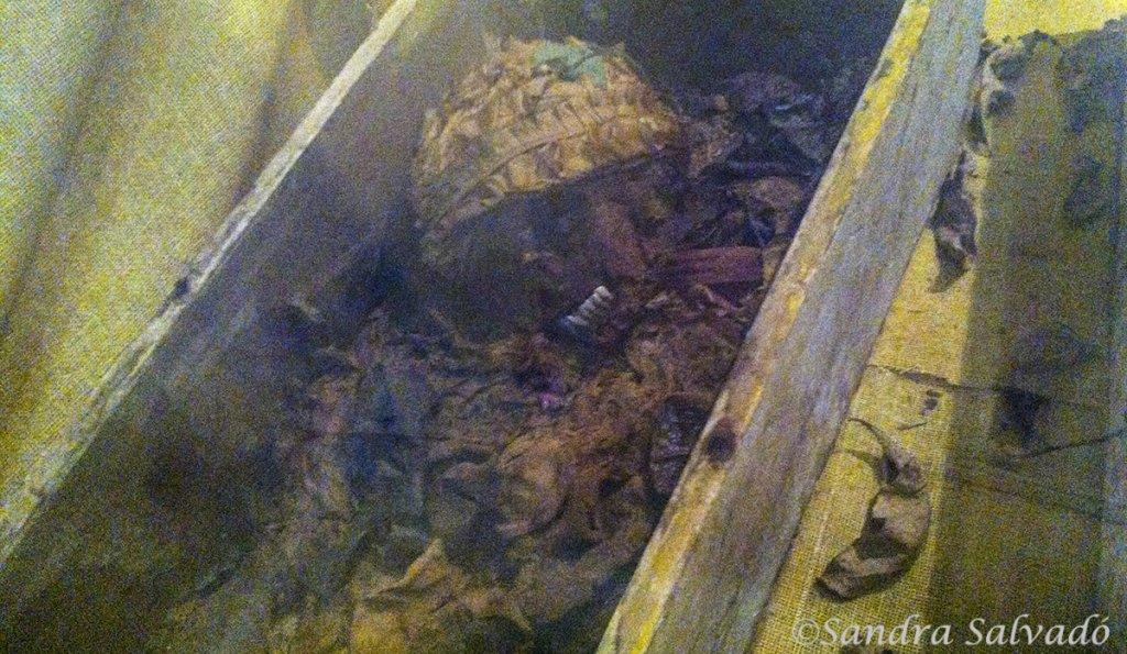 mummies santa elena yucatan