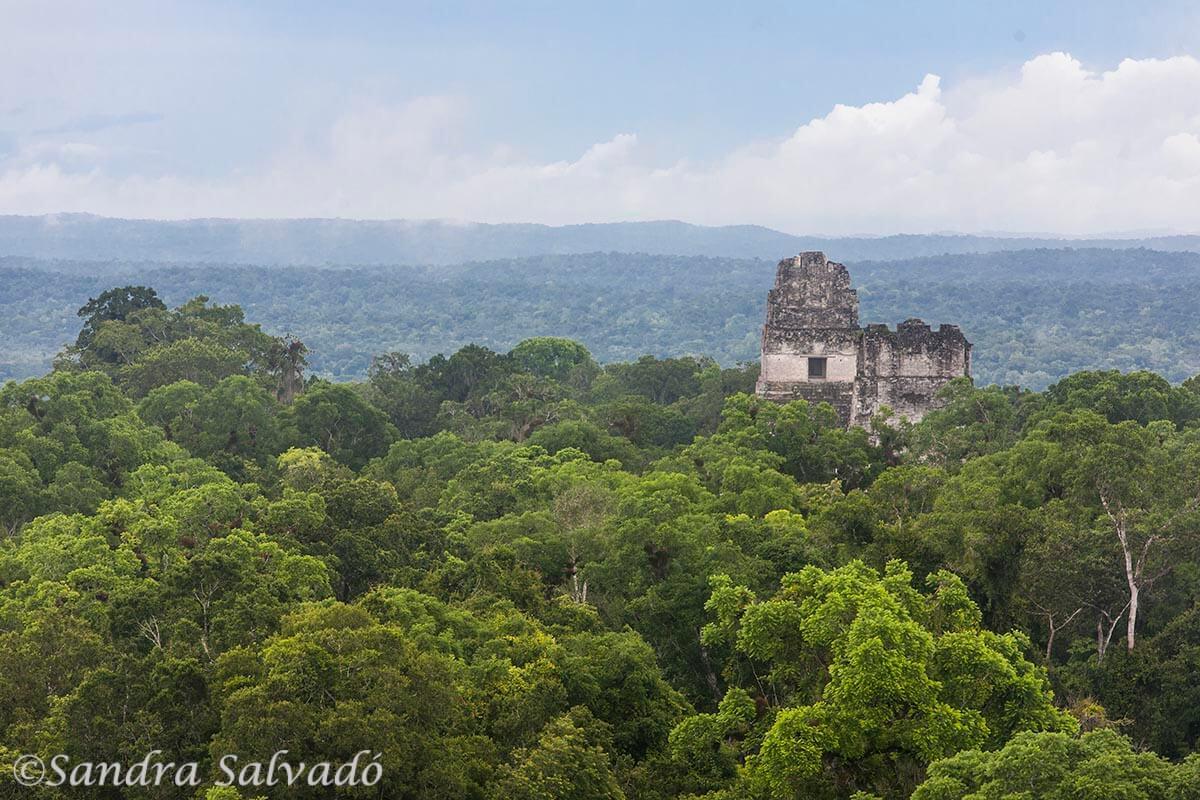 Zona arqueológica Tikal, Guatemala.