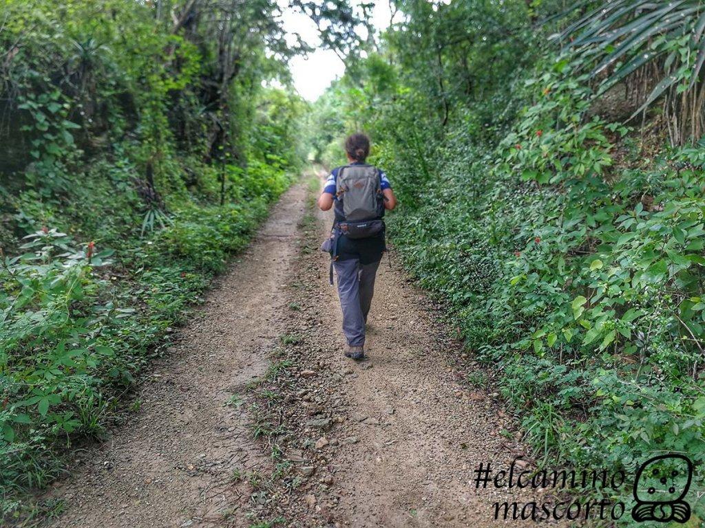 Cómo recorrer el Camino del Mayab en Yucatán, 1er sendero de largo recorrido para senderistas y ciclistas 6