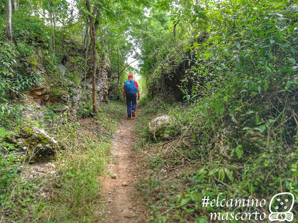 Camino del Mayab
