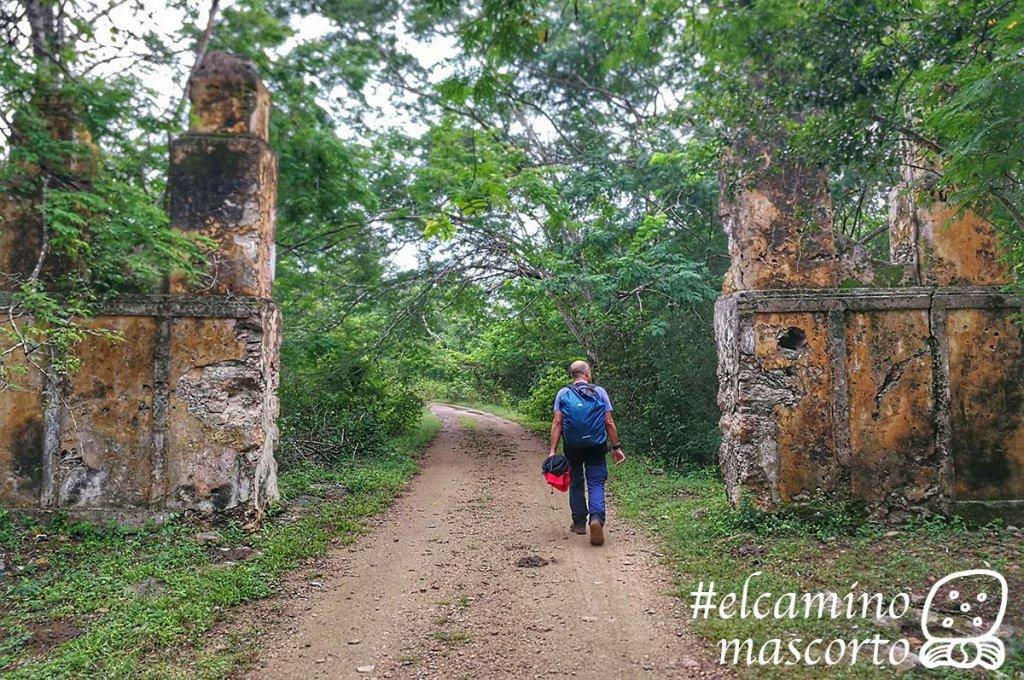 Cómo recorrer el Camino del Mayab en Yucatán, 1er sendero de largo recorrido para senderistas y ciclistas 8