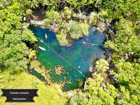 Explore the Heart of Paradise cenote in the surroundings of Tulum 1