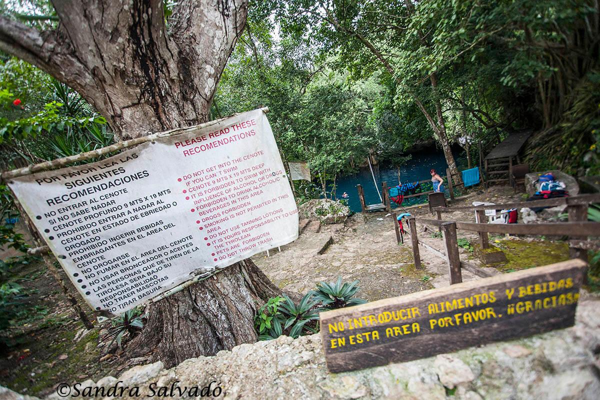 cenote lucero verde ruta de los cenotes