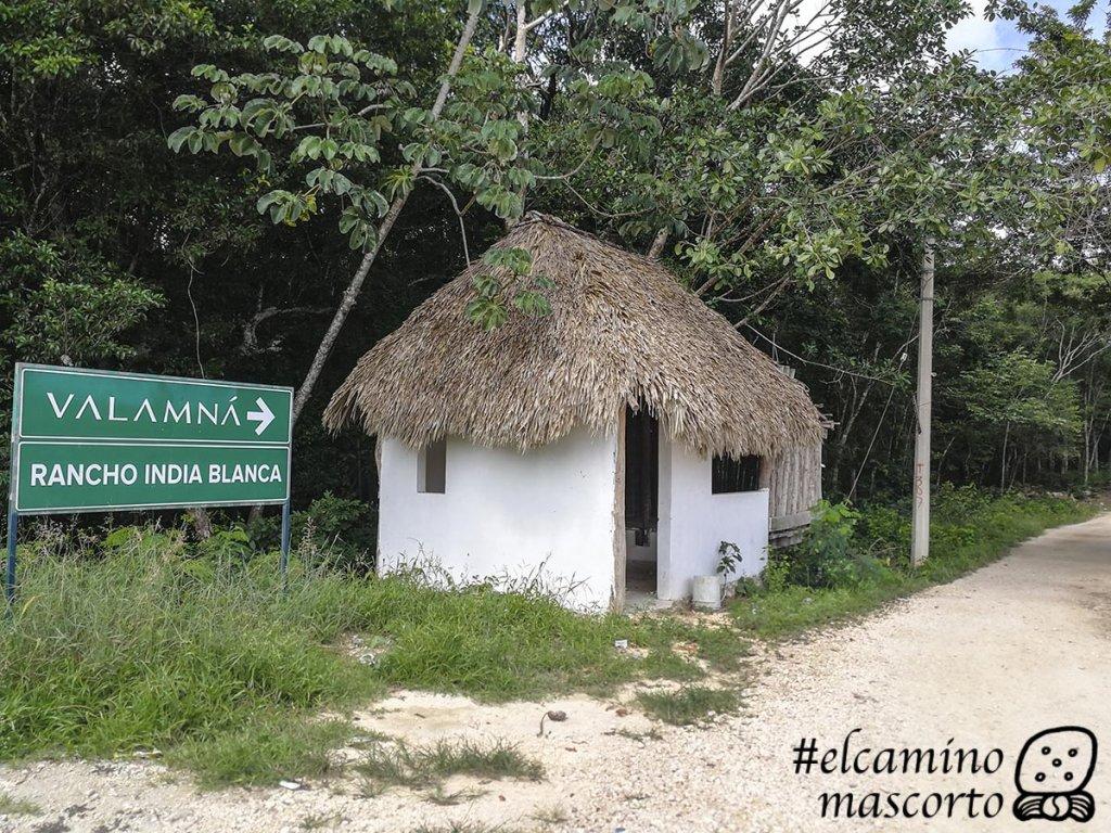 cenote alamos