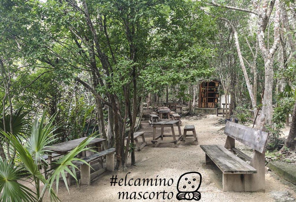 Cenote Carwash cenote aktun ha