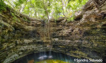 5 Mayan experiences in the Parador Turístico and cenote Chichikán