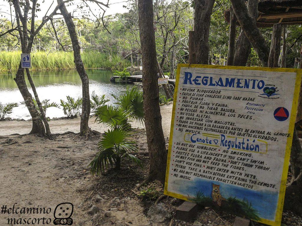 Cenote Corazon el Paraiso tulum