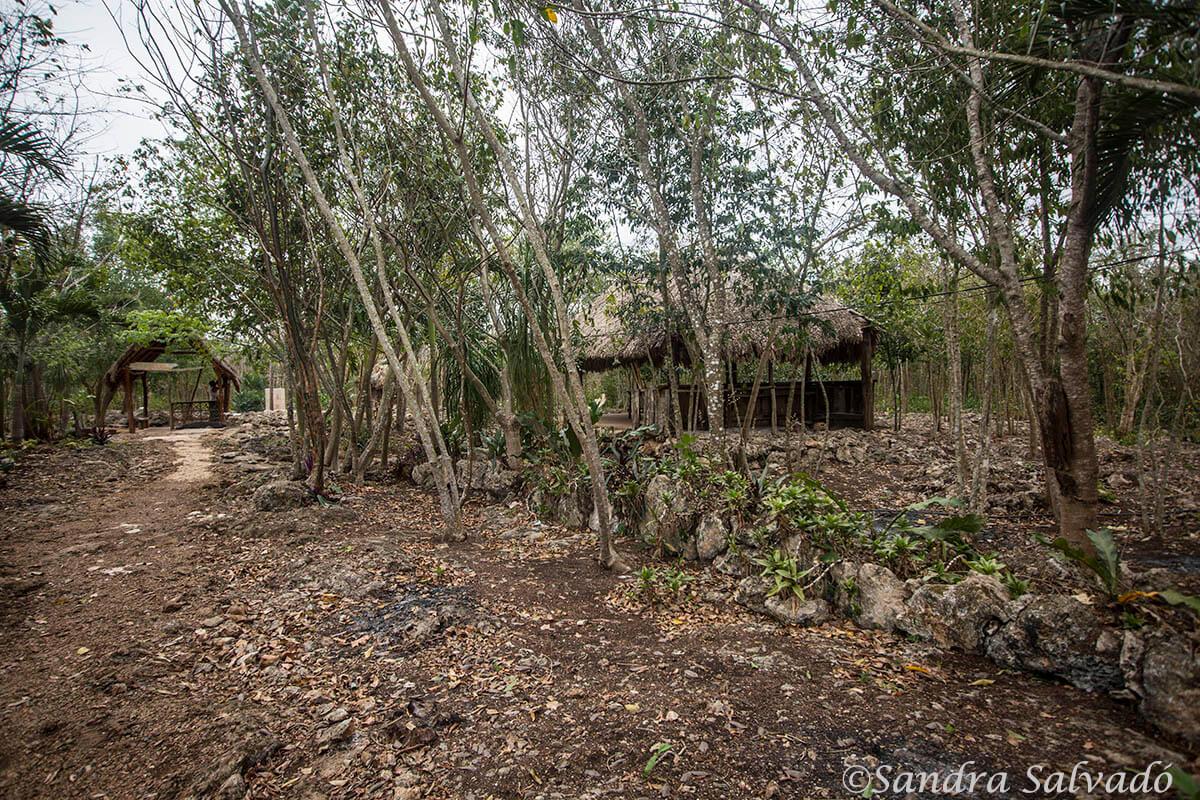 cenote y grutas sac ha