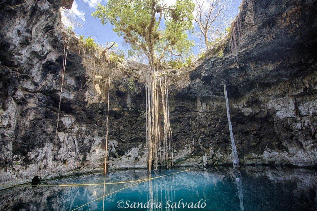 Cenotes Santa Barbara, cenote Xoch', Homun