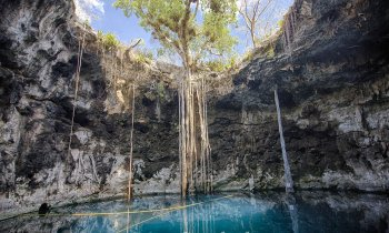 Cenotes in Mérida: the 8 best cenotes in Yucatán that I wouldn't miss near Mérida