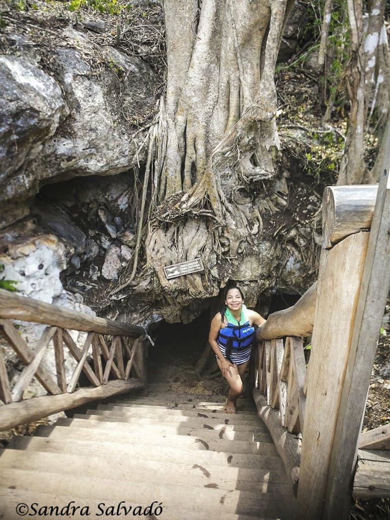 cenote_Santa_Barbara_cenote_cascabel