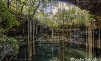 Cenote Secreto Maya, discover this wonderful hidden corner in the jungle