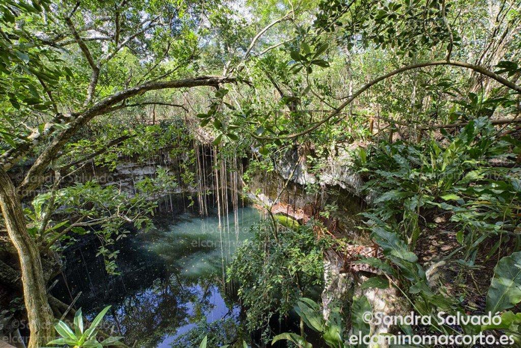Cenote Secreto Maya, cenotes Yucatan